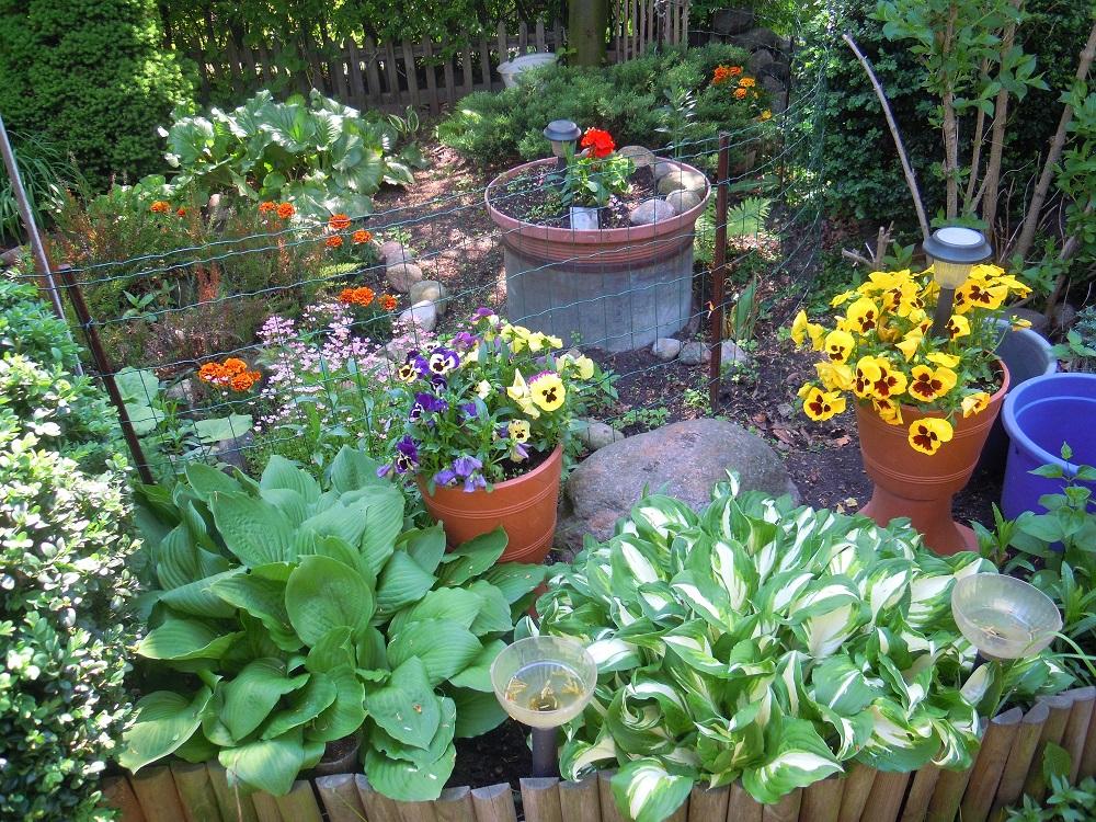 w moim ogródeczku
